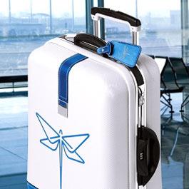 чемодан в ручной клади на Nordica