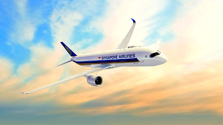 Singapore Airlines ручная кладь