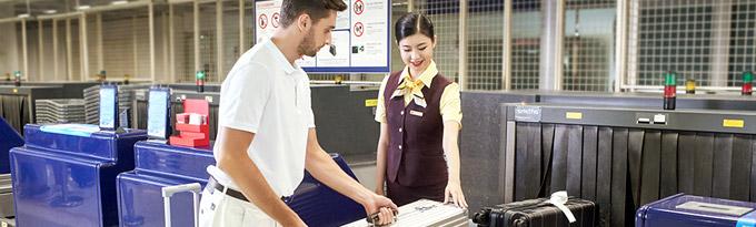 провоз багажа Hainan Airlines